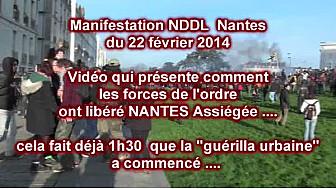 Manifestation NDDL Nantes du 22 fév 2014: derniers assauts des forces de l'ordre ... images comiques mais tristes ...
